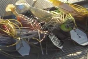 Chatterbait als effizienter Angelköder für Raubfische